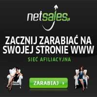 Zarabiaj na programach partnerskich w Netsales duże pieniądze